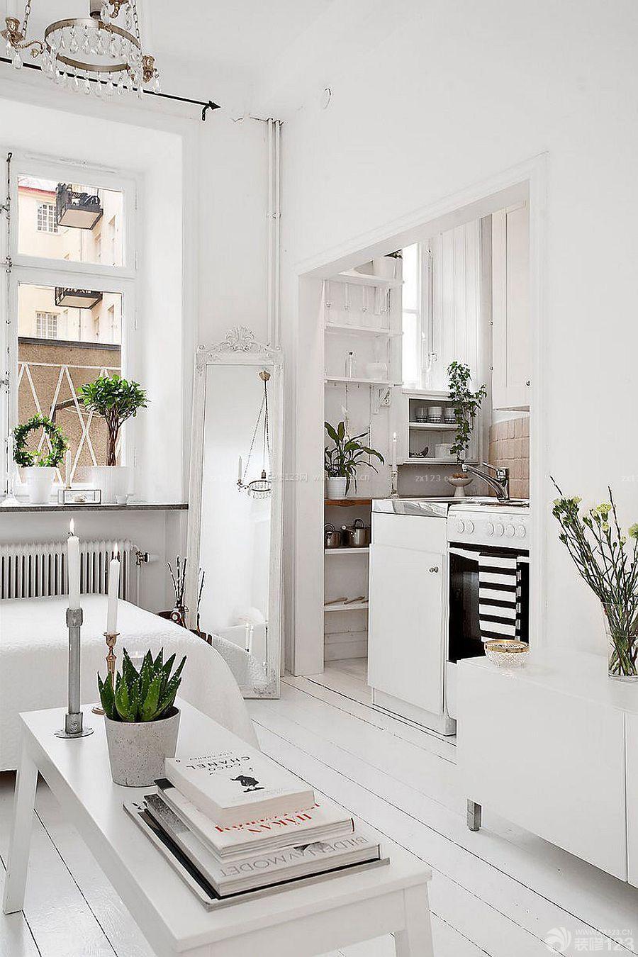 家装精美小户型60平米两室一厅装修效果图