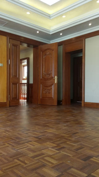 欧式别墅装修舞蹈室图片