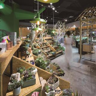 景观店装修设计 城市中的森林